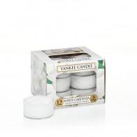 Yankee Candle White Gardenia Teelichter 118 g