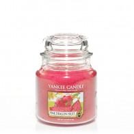 Yankee Candle Pink Dragon Fruit 411 g