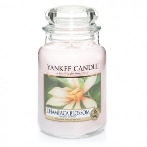 Yankee Candle Champaca Blossom 623g - Duftkerze