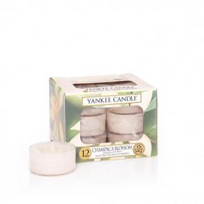 Yankee Candle Champaca Blossom Teelichter 118 g
