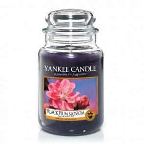 Yankee Candle Black Plum Blossom 623g - Duftkerze