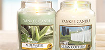 Clean Cotton und Aloe Water